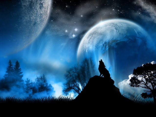 Black Wolf-Wallpapers-07